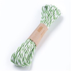 DarkSeaGreen Paper Cords String, for Jewelry Making, 2-Ply, DarkSeaGreen, 1.5mm; 10yard/bundle
