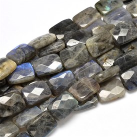 Natural Labradorite Rectangle Bead Strands, Faceted, 19~20x13x5~6mm, Hole: 1mm; about 21pcs/strand, 16.53