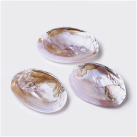 Natural Freshwater Pearl Shell Decoration
