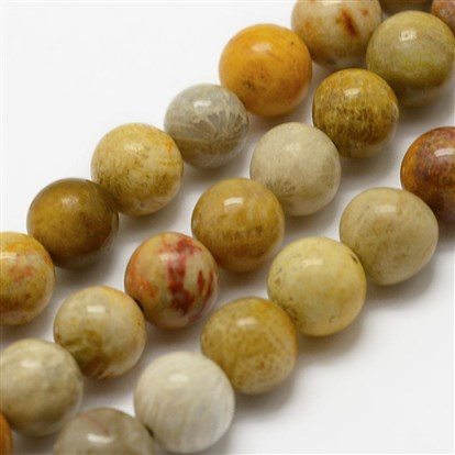 Natural Chrysanthemum Stone/Fossil Coral Beads Strands, Round