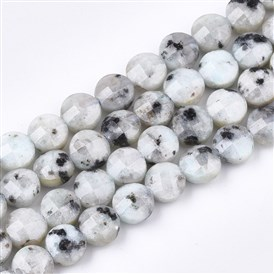 Natural Larimar Beads Strands, Faceted, Flat Round
