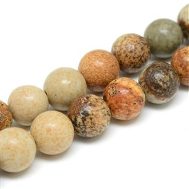 Natural Picture Jasper Bead Strands, Round