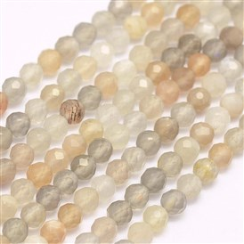 Natural Moonstone Beads Strands, Faceted, Round