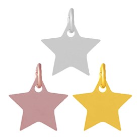 304 Stainless Steel Charms, Star