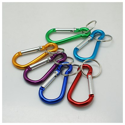 Aluminum Oval Carabiner Keychain, with Iron Clasps, 60.5x29mm