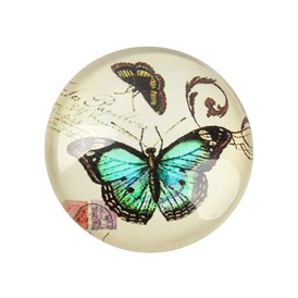 Butterfly Printed Glass Cabochons, Half Round/Dome