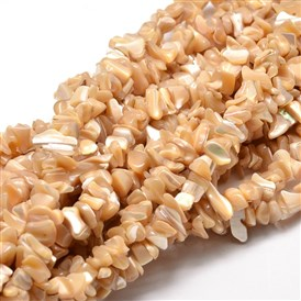 Shell Chip Beads Strands, Shell Shards, SandyBrown, 4~15x5~8mm, Hole: 1mm; about 31.5