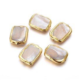 Shell Beads, with Golden Plated Brass Findings, Rectangle