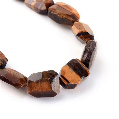 Natural Tiger Eye Bead Strands, Faceted, Trapezoid-1