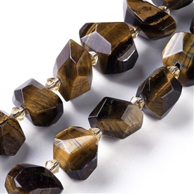 Natural Tiger Eye Beads Strands, Faceted, Nuggets