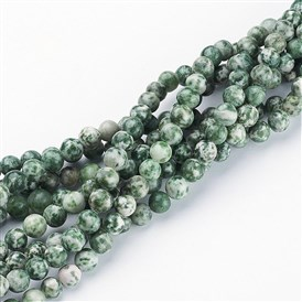 Gemstone Beads Strands, Green Spot Jasper, Round