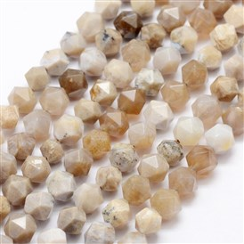 Natural Chrysanthemum Stone Beads Strands, Star Cut Round Beads, Faceted