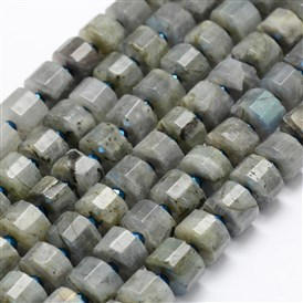 Natural Labradorite Beads Strands, Column